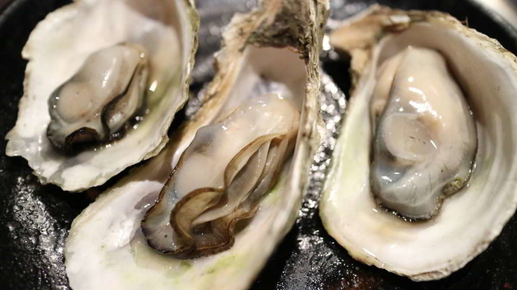 Oysters open and raw