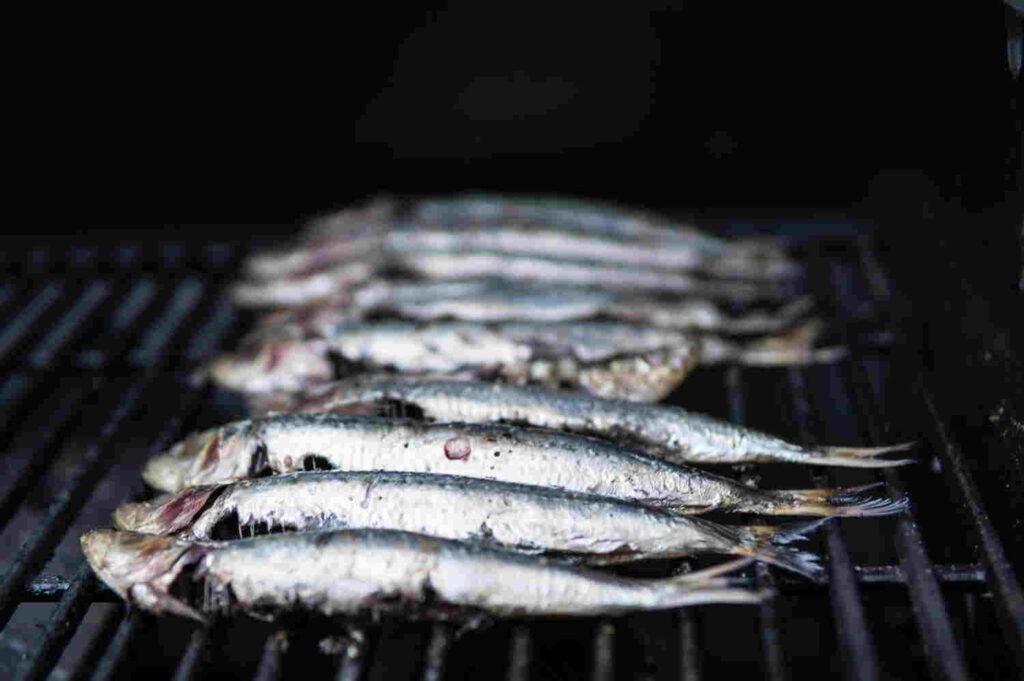 oily fish omega-3