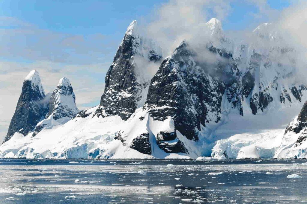 Krill are abundant in Antarctica